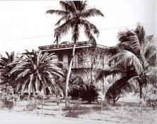 Kay West- Hemingway house 1933